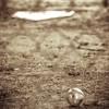 Baseball Off-Season